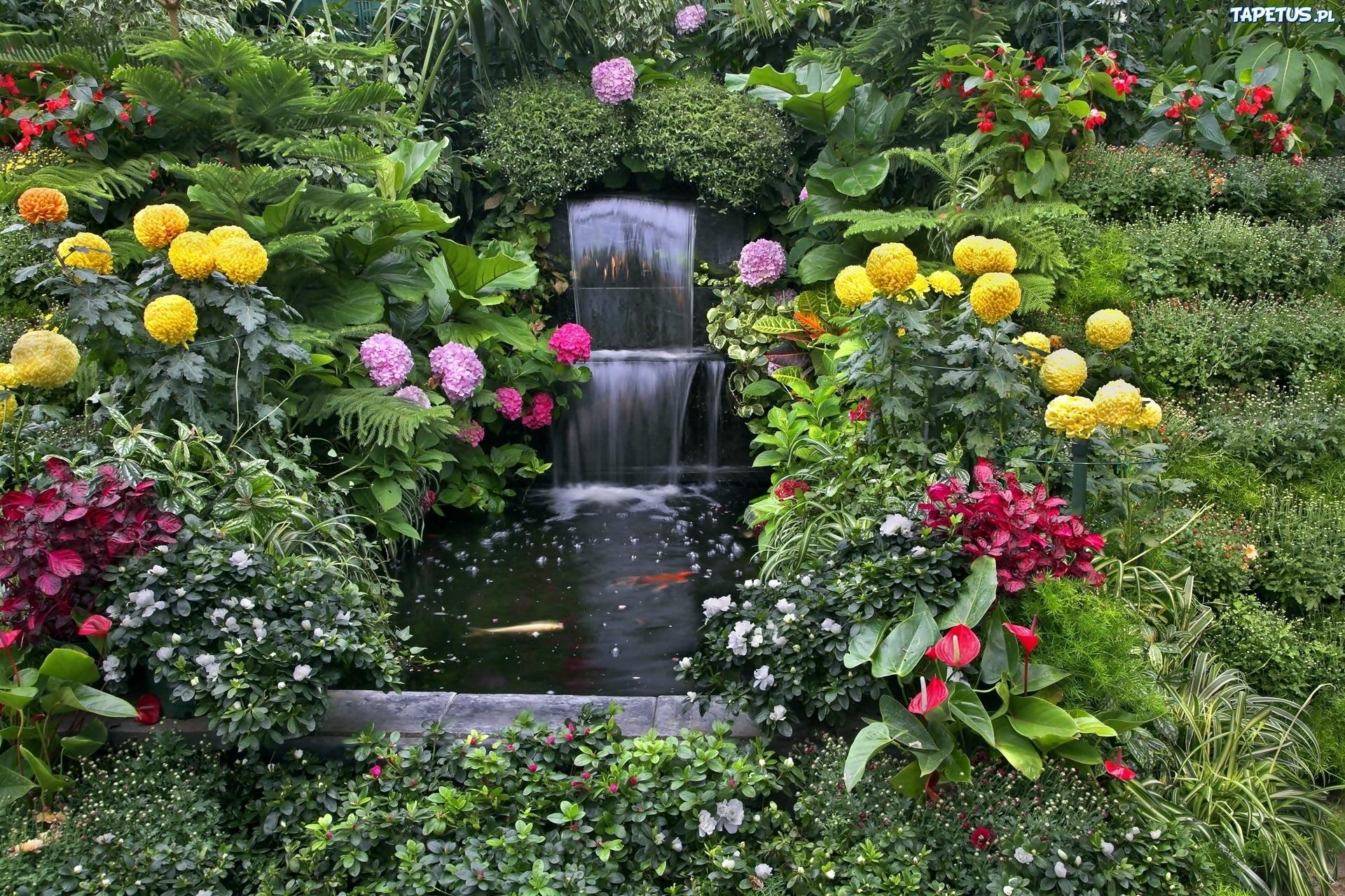194662_ogrod-kwiatowy-fontanna-oczko-wodne-karpie-koi.jpg