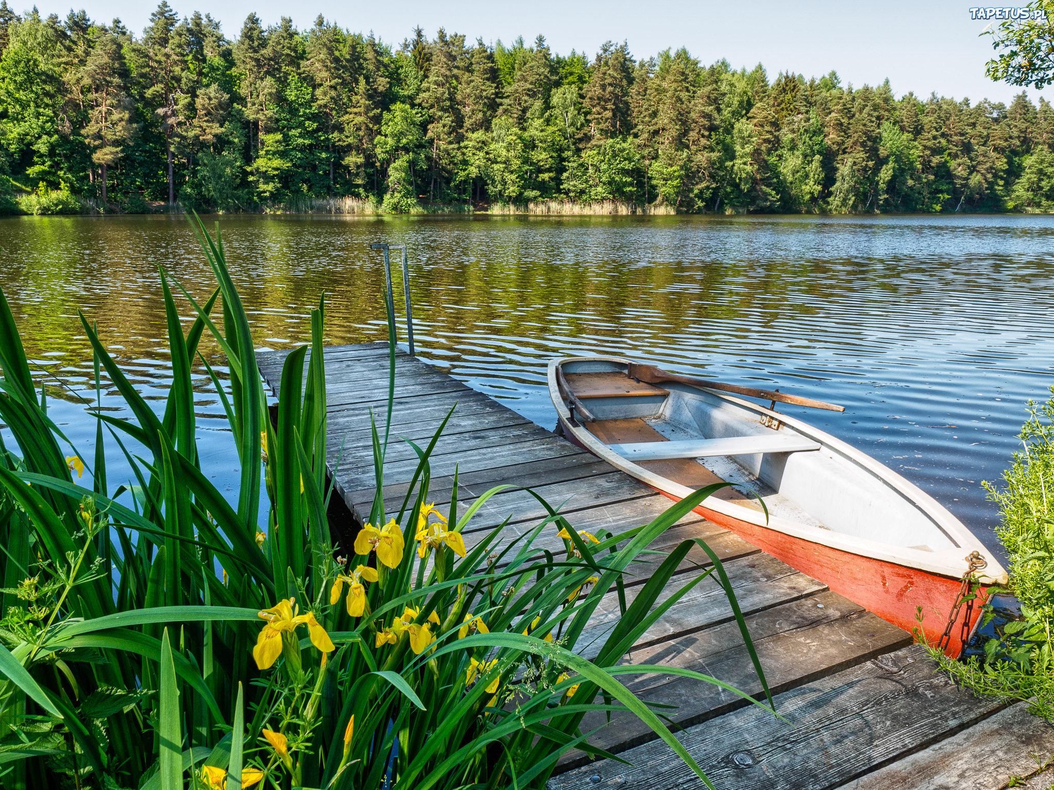 255431_lato-jezioro-pomost-lodka.jpg